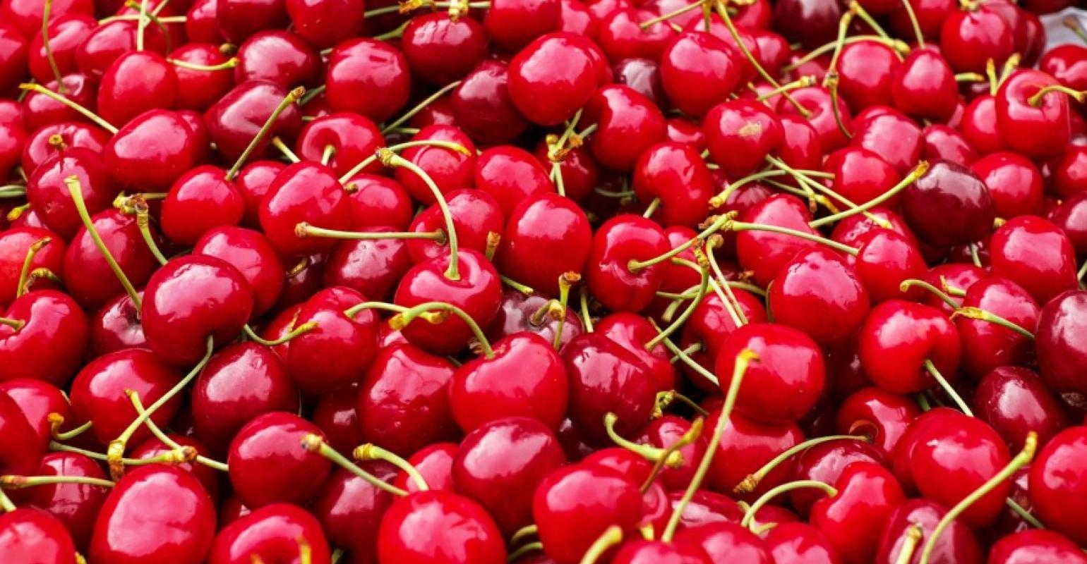 Hapag-Lloyd launches 'Cherry Express' for Chile cherry exports to Asia |  Seatrade Maritime