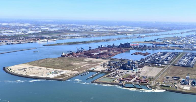 kop-van-de-beer-bouwterrein-havenbedrijf-rotterdam-danny-cornelissen-juni-2020.jpg